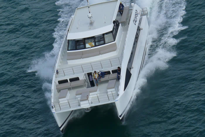 20M Dive Boat Catamaran bow view
